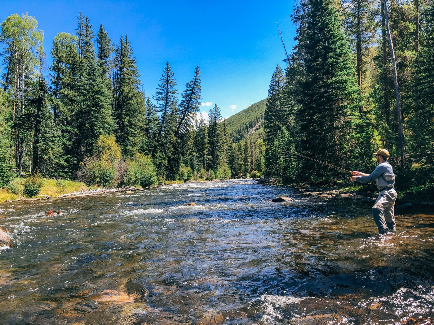 Fly Fishing the Taylor River, Gunnison Colorado